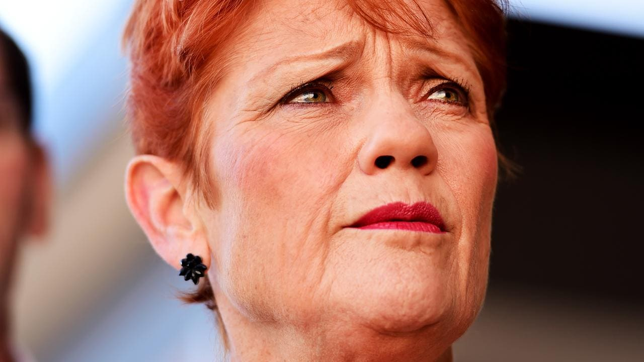 Pauline Hanson's website domain redirected to refugee page after expiry