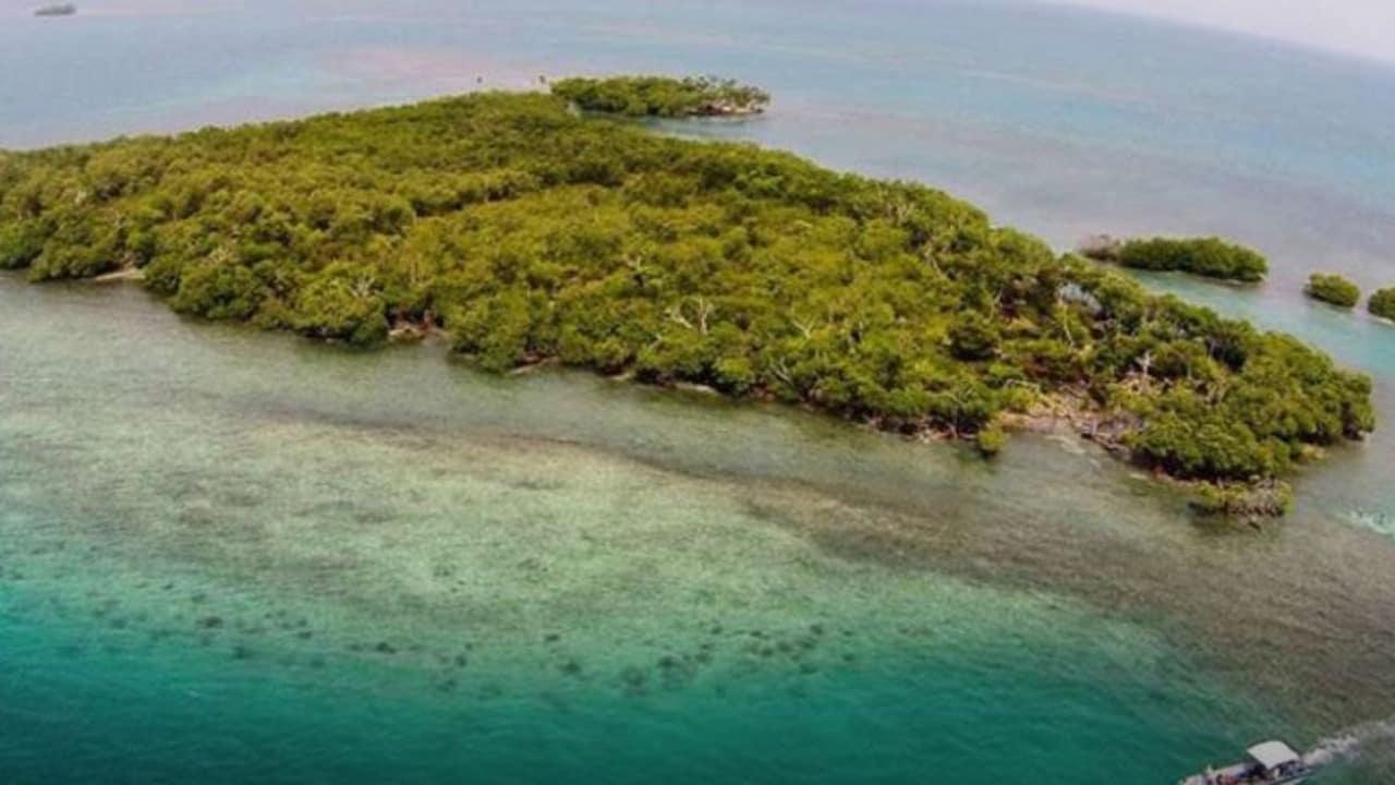Tropical islands you could buy for less than a studio apartment in Sydney